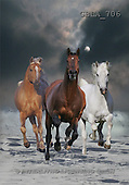 Bob, ANIMALS, collage, horses, photos(GBLA706,#A#) Pferde, caballos