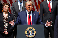 United States President Donald J. Trump delivers remarks before signing H.R. 7010 - PPP Flexibility Act of 2020 in the Rose Garden of the White House in Washington, DC on June 5, 2020. At left is Jovita Carranza, administrator, US Small Business Administration (SBA).<br /> Credit: Yuri Gripas / Pool via CNP/AdMedia