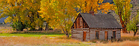 Butch Cassidy's Birthplace, Circleville, Utah, Birthplace of famous outlaw, Autumn cottonwoods Piute Canyon