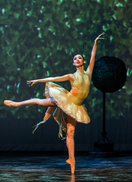 """English National Ballet and Flawless performing """"Against Time"""". Created by Jenna Lee and Marlon """"Swoosh"""" Wallen."""