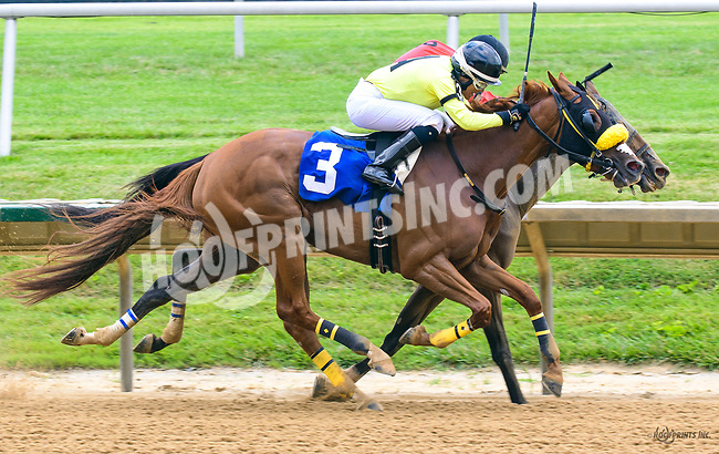 Our Princess Belle winning at Delaware Park on 7/1/17