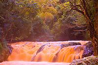 Orange Falls, Dominican Republic, Caribbeaan Sea, Hispanola Island  Color from tanin in jungle plants