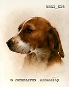 GIORDANO, REALISTIC ANIMALS, REALISTISCHE TIERE, ANIMALES REALISTICOS, paintings+++++,USGI618,#A# dogs