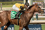ARCADIA, CA FEBRUARY 10: #5 Kanthaka, ridden by Flavien Prat, wins the San Vicente Stakes (Grade ll) on February 10, 2018 at Santa Anita Park in Arcadia, CA. (Photo by Casey Phillips/ Eclipse Sportswire/ Getty Images)