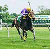 That's My Bai winning at Delaware Park on 6/22/16