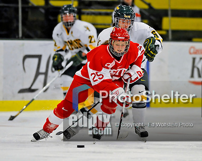 9 February 2008: Boston University Terriers' defenseman Jenn Arms, a Sophomore from Chapin, SC battles University of Vermont Catamounts' forward Sarah Ellins, a Freshman from Greeley, CO, at Gutterson Fieldhouse in Burlington, Vermont. The Terriers shut out the Catamounts 2-0 in the Hockey East matchup...Mandatory Photo Credit: Ed Wolfstein Photo