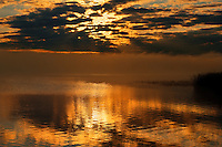 Fog at sunrise on Sturgeon Lake<br />Williamson Provincial Park<br />Alberta<br />Canada