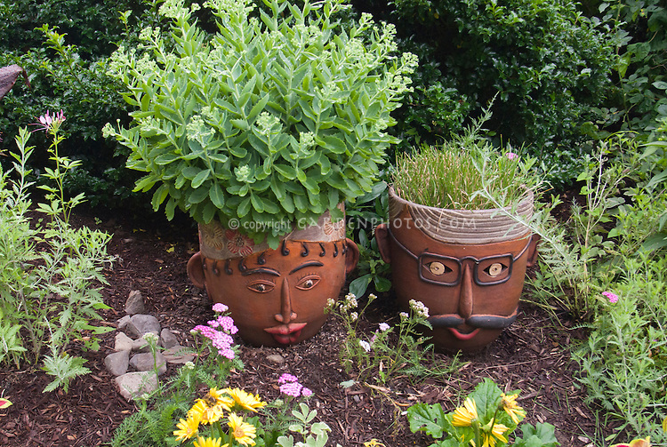 Container garden pots with faces annual and perennial plants and flowers coleus