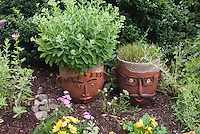 Container Gardening Stock Images