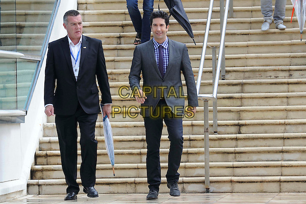 David Schwimmer.'Madagascar 3' Stars during Cannes Film Festival, Cannes, France, .May 18th 2012..full length grey gray blazer jacket suit tie purple checked shirt steps .CAP/CAS.©Bob Cass/Capital Pictures.