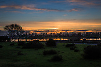 Sunset glows in the sky and reflects in the waters of the San Leandro Bay at the Martin Luther King Jr. Regional Shoreline in Oakland, California.