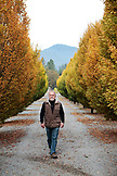 USA, Oregon, Medford, Cal Schmidt stands on his farm, Schmidt Family Vineyards is located in the beautiful Applegate Valley and is owned by Judy and Cal Schmidt, the winery consists of country charm, beautiful gardens and fine wines