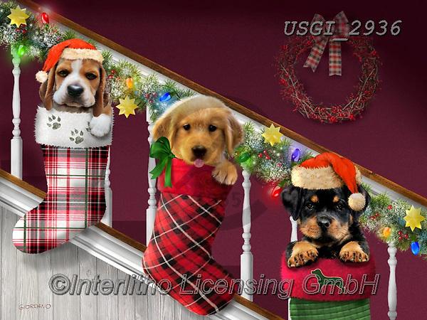 GIORDANO, CHRISTMAS ANIMALS, WEIHNACHTEN TIERE, NAVIDAD ANIMALES, paintings+++++,USGI2936,#xa# ,dog,dogs