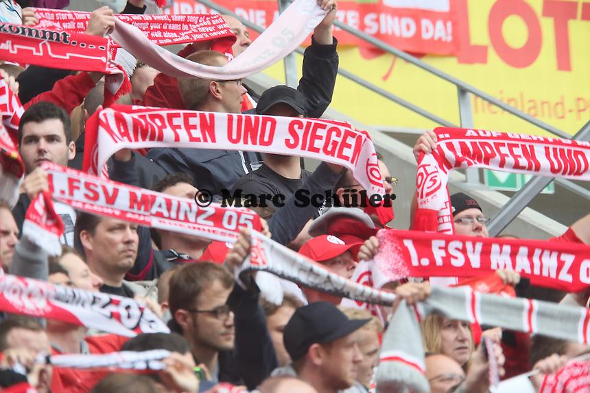 Mainzer Fans - 1. FSV Mainz 05 vs. Hamburger SV, Coface Arena, 34. Spieltag