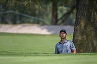 Xander Schauffele (USA) looks up through the trees as he contemplates his chip onto 11 during round 2 of the World Golf Championships, Mexico, Club De Golf Chapultepec, Mexico City, Mexico. 3/2/2018.<br /> Picture: Golffile | Ken Murray<br /> <br /> <br /> All photo usage must carry mandatory copyright credit (&copy; Golffile | Ken Murray)