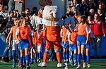 UTRECHT - Stockey    tijdens de Pro League hockeywedstrijd wedstrijd , Nederland-China . COPYRIGHT  KOEN SUYK