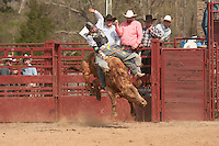 VHSRA - Powhatan, VA - 4.13.2014 - Bull Riding and Roughstock