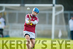 Kerry in action against Gary Greville Westmeath in the Allianz Hurling League 2A at Austin Stack Park on Sunday.