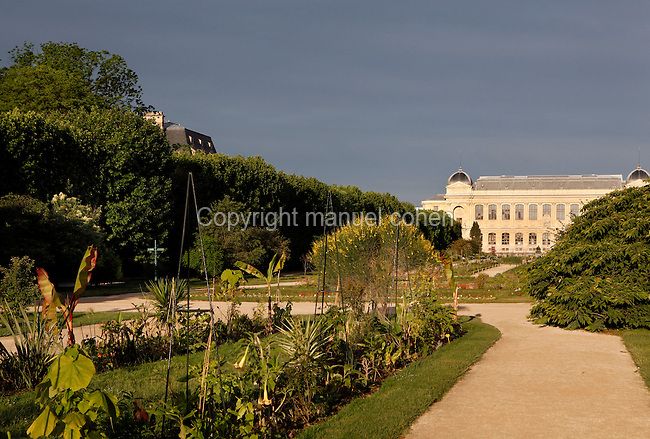 The Carres de la Perspective (the plots of perspective) located in the Jardin des Plantes, Paris, 5th arrondissement, France. In the background the Grande Gallerie de l'Evolution built by Jules Andre can be seen. Founded in 1626 by Guy de La Brosse, Louis XIII's physician, the Jardin des Plantes, originally known as the Jardin du Roi, opened to the public in 1640. It became the Museum National d'Histoire Naturelle in 1793 during the French Revolution. Picture by Manuel Cohen