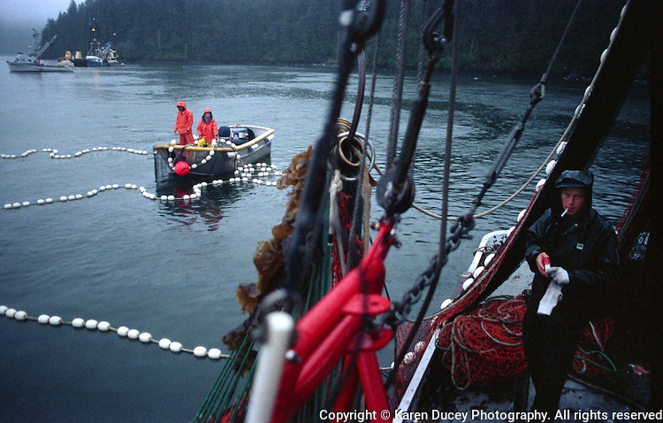 The salmon seiner, F/V Top Gun, fishing outside the Kitoi Bay Hatchery in Prince William Sound.