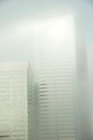 Seattle Upper Floor Fog