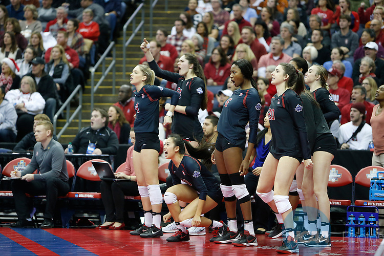 COLUMBUS, OH - DECEMBER 17:  The Stanford University bench reacts to a point against the University of Texas during the Division I Women's Volleyball Championship held at Nationwide Arena on December 17, 2016 in Columbus, Ohio.  Stanford beat Texas 3-1 to win the national title.  (Photo by Jay LaPrete/NCAA Photos via Getty Images)