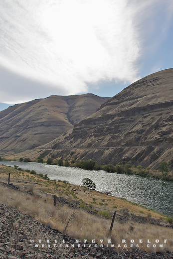 Afternoon on the Deschutes River.