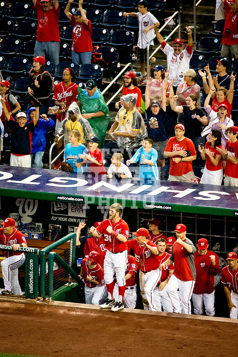 Washington Nationals outfielder Bryce Harper (34) celebrates a play on the field from the dugout during a game against the Miami Marlins at Nationals Park in Washington, DC on September 8, 2012.