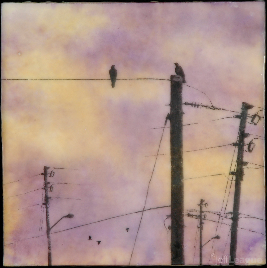Photography silhouette of birds on telephone poles in encaustic painting of sunset sky.
