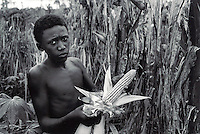 BRAZIL,El DORADO DOS CARAJAS : A young  of the Landless workers movement working  during the harvest of corn on 17 April, 1998  at transamazonica in Parauapebas south of Pará, northern Brazil. -  Photo by Paulo Amorim