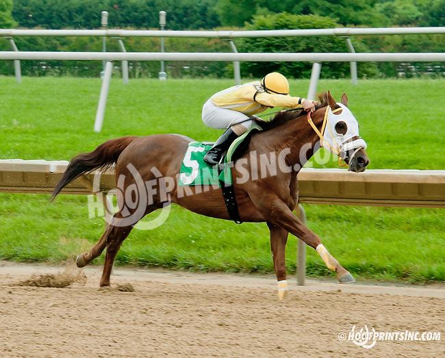 OK Nothanksforaskn winning at Delaware Park racetrack on 6/19/14