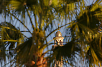 TG40101-D. Minaret on the Port Grand Mosque (El Mina Masjid) as seen through palm trees in Hurghada, Egypt. Built right on the shore of the Red Sea, it was completed in 2012.<br /> Photo Copyright &copy; Brandon Cole. All rights reserved worldwide.  www.brandoncole.com