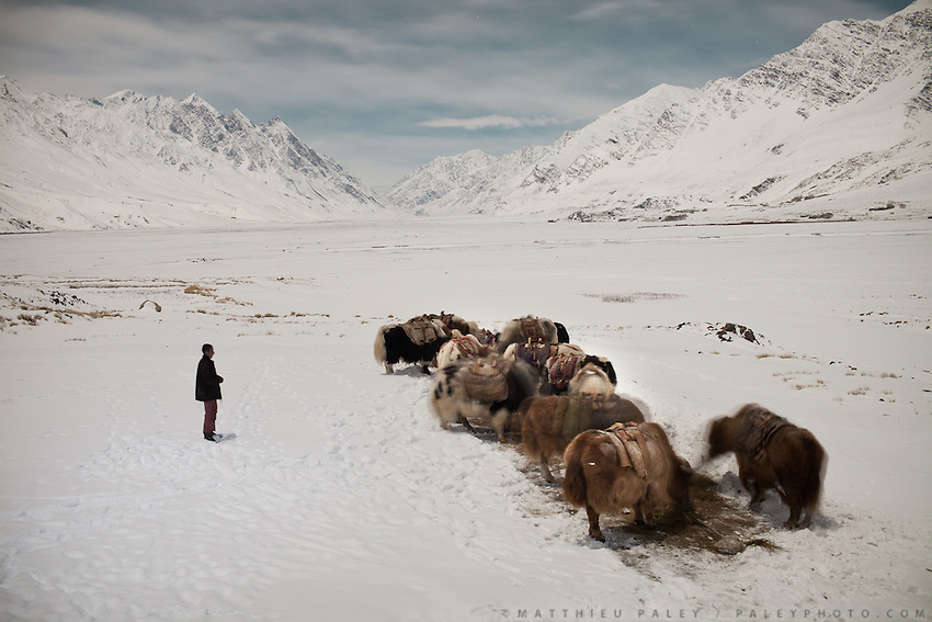 Night exposure, Langar. With Djamshed Pamiri and a yak caravan at rest...In and around Sarhad village, the end of the road in the Wakhan Corridor.