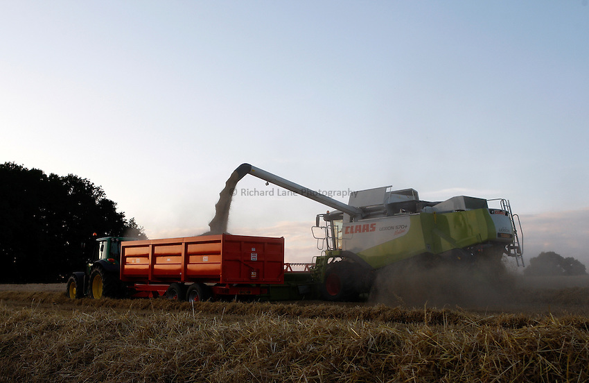 Photo: Richard Lane/Richard Lane Photography. Grain harvest near Great Missenden, Buckinghamshire. 22/07/2008. A Class combine harvester unloads into a John Deere tractor and trailer.