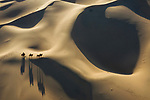 Camels being led across ever changing sand dunes, by Zay Yar Lin