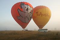20121101 November 01 Hot Air Balloon Gold Coast