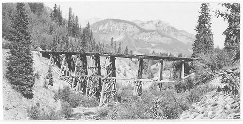 RGS Trestle 51-A from northeast.<br /> RGS  Trout Lake, CO  Taken by Maxwell, John W. - 8/17/1960
