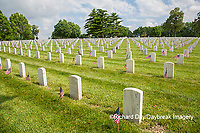 65095-02610 Gravestones at Jefferson Barracks National Cemetery St. Louis, MO