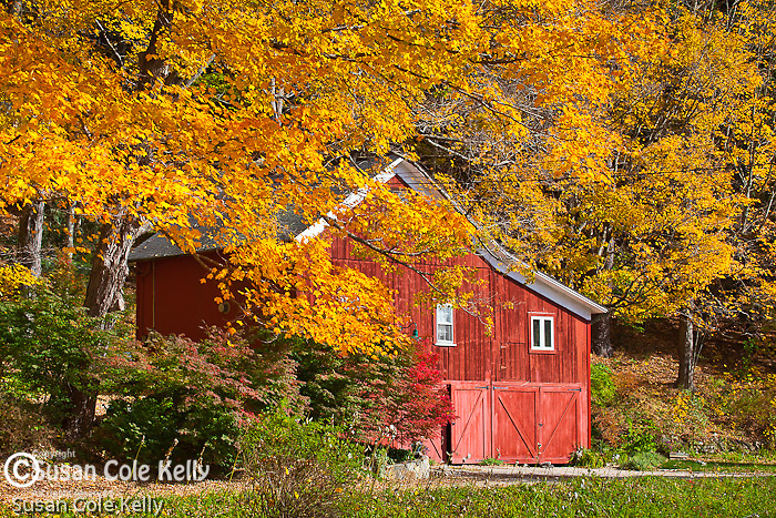 Fall foliage in West Cornwall, CT, USA