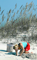 News///Turtle Dig///Rebecca Huber digs into a marked turtles' nest to see how many of the eggs had hatched. PHOTO BY CHUCK BECKLEY