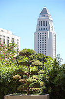 Los Angeles City Hall Building