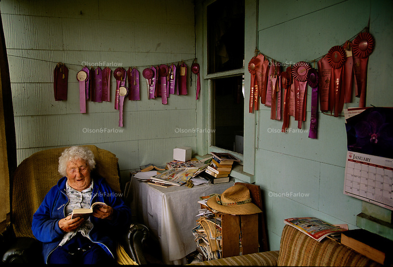 "Winner of more than 60 Humbolt County gardening prizes, 93-year old Mary Coppini relaxes on the ribbon-laden porch of her Ferndale, California home. ""There are lots more inside. I've just never hung them up,"" she said. Mary has won the competition so many times, that the organizers no longer allow her to enter."