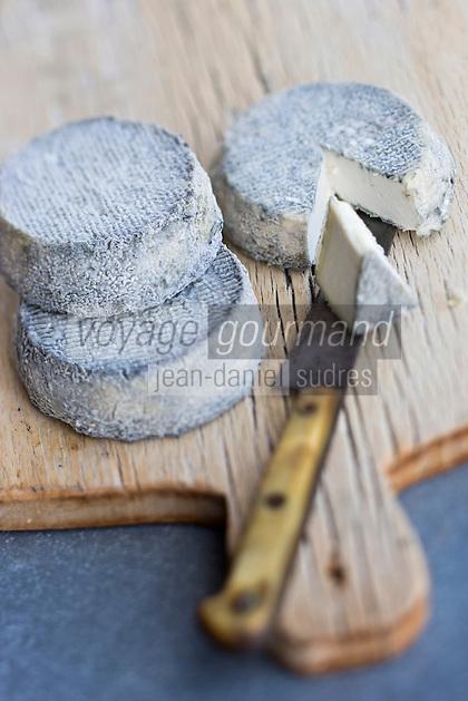 Europe/France/Centre/41/Loir-et-Cher/Sologne/Soings-en-Sologne: AOP Selles-sur-Cher chez Hervé Barbeillon, producteur // Europe/France/Centre/41/Loir-et-Cher/Sologne/Soings-en-Sologne: AOP Selles-sur-Cher  is a French goats'-milk cheese made in the Centre region of France - Hervé Barbeillon's farm