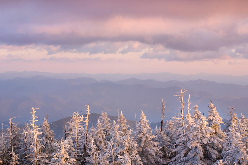"""WINTER PASTELS"" -- Fresh snow clinging to evergreens marks the beginning of winter at Clingmans Dome in Great Smoky Mountains National Park. The park is located on the border of North Carolina and Tennessee in the southern Appalachian mountains."