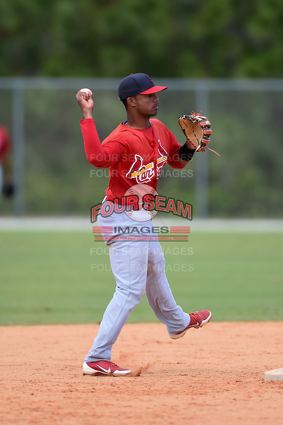 St. Louis Cardinals Eliezer Alvarez during a minor league spring training game against the New York Mets on April 1, 2015 at the Roger Dean Complex in Jupiter, Florida.  (Mike Janes/Four Seam Images)