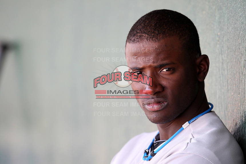 Phoenix Desert Dogs shortstop Adeiny Hechavarria #20 in the dugout during an Arizona Fall League game against the Mesa Solar Sox at HoHoKam Park on November 3, 2011 in Mesa, Arizona.  Mesa defeated Phoenix 8-7.  (Mike Janes/Four Seam Images)