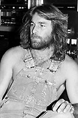 DENNIS WILSON - THE BEACH BOYS