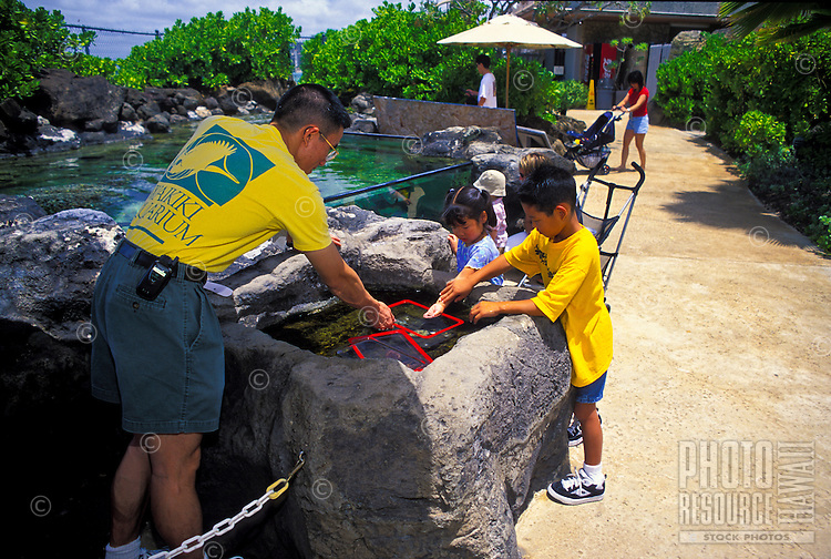 Young children get hands- on with sea creatures at Waikiki Aquarium's Edge of the Reef Tank display.