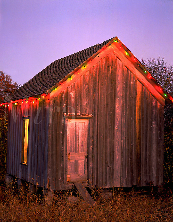 Country shed decorated with Christmas lights.