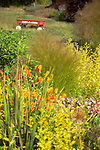 Close focus shot looking at a mixed bed of ornamental grasses, shrubs, and flowering orange California Poppies, with a red wagon sitting behind in soft focus on Vashon Island in Washington State's Puget Sound.